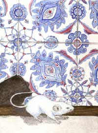 Mavi Fare, The Mouse in the Mosque